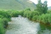 Река Сарма