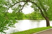 Барский пруд