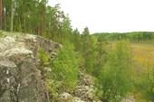 Скала на пути к оз.Гомсельга