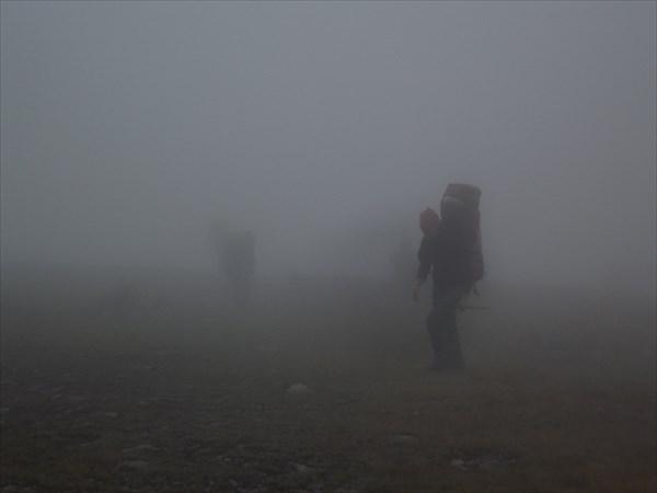 Ёжики в тумане