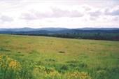 Южный Урал. Вид с дороги на Миасс