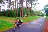 Немирсетский региональный парк.раннее утра