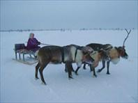 Архангельск зимой