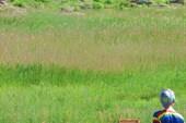 каменные глыбы у реки Молочной