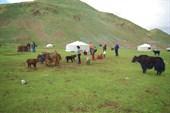 Монголия5