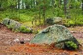 Камни на стоянке