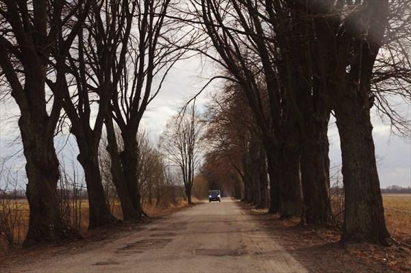 Дороги Калининградской области