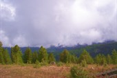 Утро. Туман закрыл горизонт
