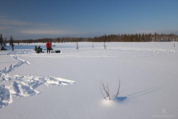 Загадочные круги на болотах. Фото Андрея Подкорытова.