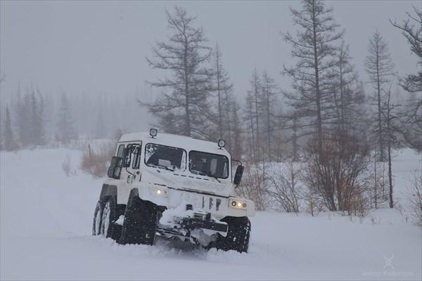 Вездеход Трэкол. Фото Андрея Подкорытова.