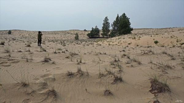 На Чарских песках