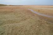 озеро подсохло