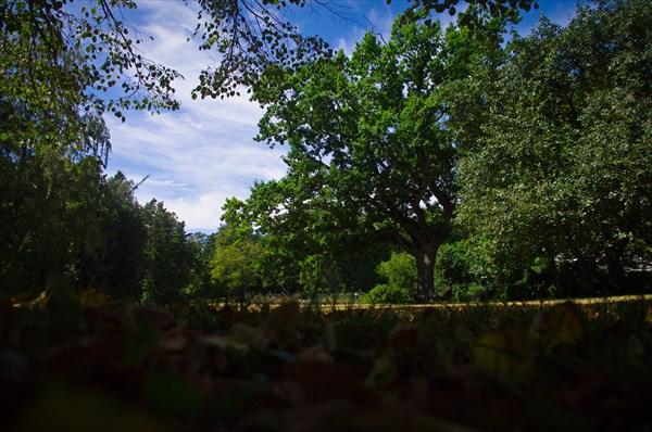Внезапная осень у музея янтаря в Паланге.
