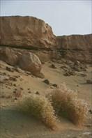 Уйгуристан
