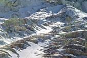 На леднике Менсу