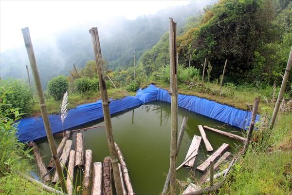 Nepal049_IMG_0049