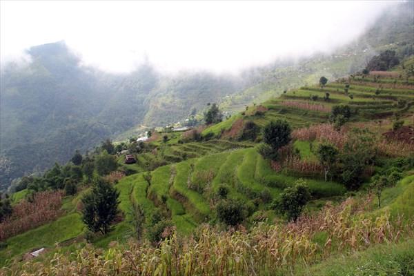 Nepal050_IMG_0050