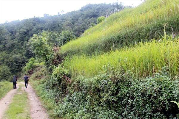 Nepal063_IMG_0063