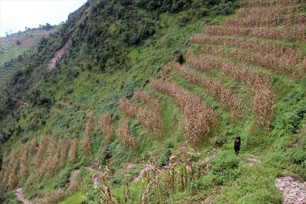 Nepal071_IMG_0071