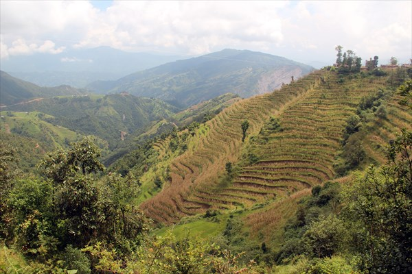 Nepal078_IMG_0078