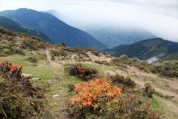 Nepal311_IMG_0311