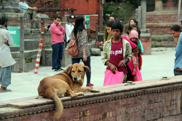 Nepal367_IMG_0367