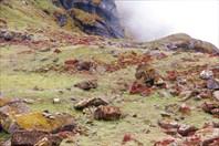 Nepal280_IMG_0280