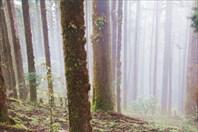 Nepal316_IMG_0316