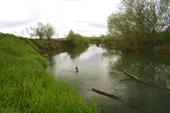 река Шерна