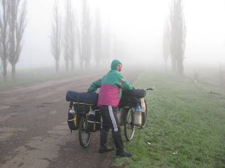 Йожык в тумане