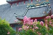 Один из многочисленных храмов