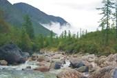 Река Сыни