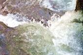 Удивительная вода