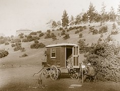 Late_19th_Century_Tasmania