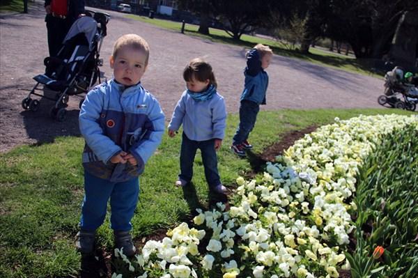 Дети увлеченно кидают камушки в фонтан