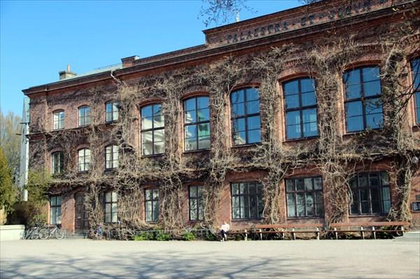 Плющ на фасаде придает особый шарм зданию