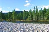Река Уян, до истоков 32 км. до Учура 200 км с небольшим.