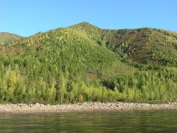 Заводей нет, река течет бурным, монолитным потоком.