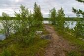 Мыс на озере придорожном