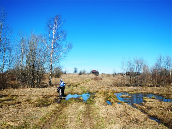 Полями-болотами