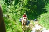 Петя и его конь Чинхисхан