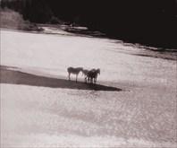 Унья, заповедная река