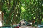 Улица Руа-Гонсалу-де-Карвальо