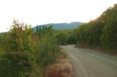 Дорога над Алуштой