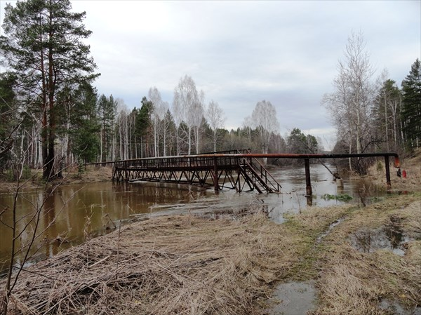 """Мост у загородного лагеря """"городок солнца"""""""