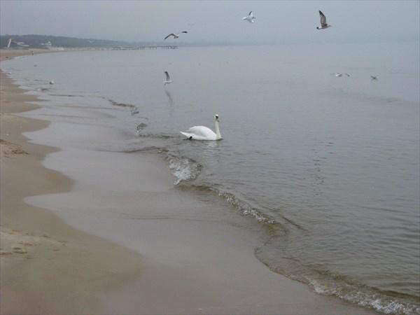 Гданьск. Балтийское море