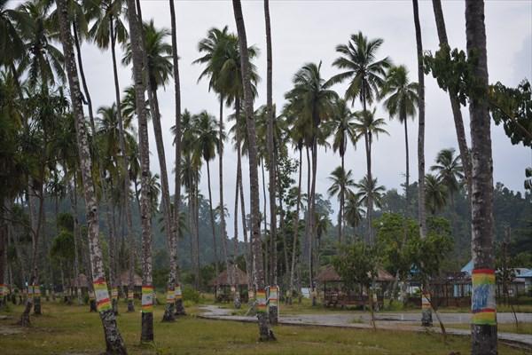 Парк городской