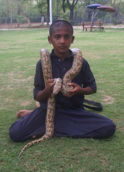 'Укротитель' змей