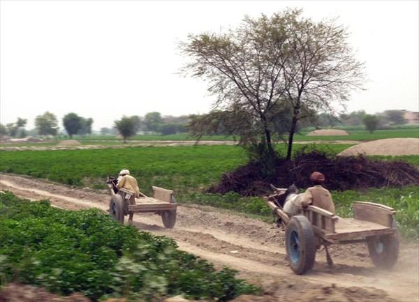 'Сельхозтехника'