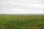 Оз.Селигер (залив)